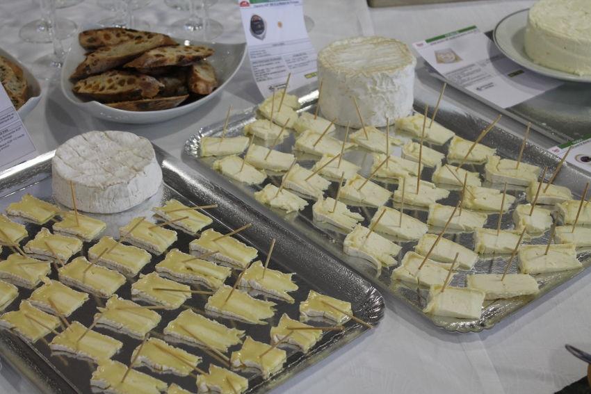 La crémerie-fromagerie aura son CAP à l'automne : le CIFA de l'Yonne oriente les jeunes vers la filière…