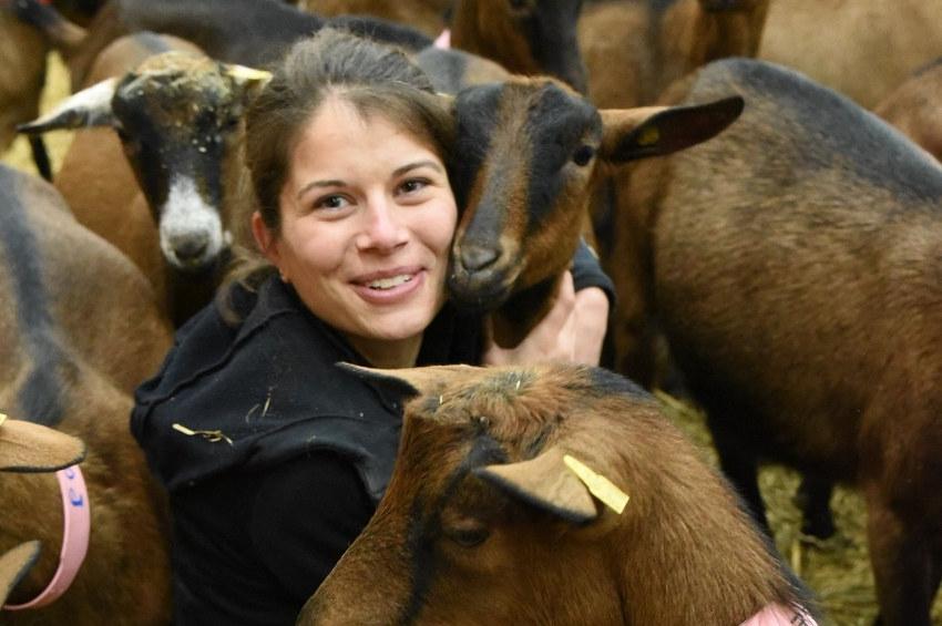 Le SOS de Claire GENET pour nourrir ses chèvres : recherche luzerne bio et foin de qualité en priorité !