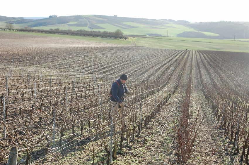 L'ADIE s'intéresse à une nouvelle approche de l'insertion en zones rurales