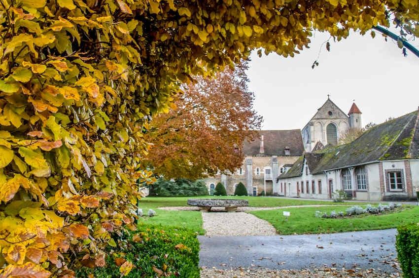Pontigny : la Fraternité Saint-Pierre relève son offre à 2,1 millions d'euros pour acquérir l'une des « filles » de Cîteaux…