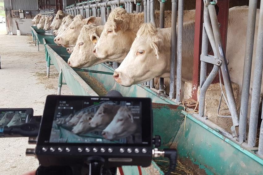 La MSA Bourgogne s'engage aux côtés des agriculteurs en souffrance…