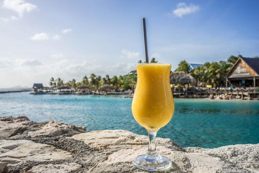 Pôle Emploi a organisé leur recrutement : neuf Icaunais grossissent l'effectif du Club Med...