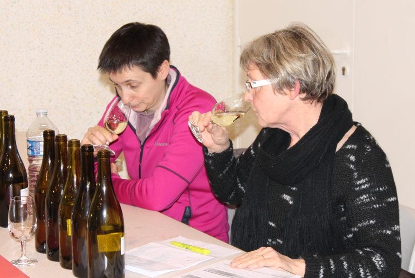 Sélection du Concours général agricole : 81 viticulteurs du terroir  dans les starting-blocks !