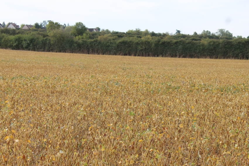 Le coup de pouce du département aux agriculteurs : le  dispositif de cumul financier s'élargit…
