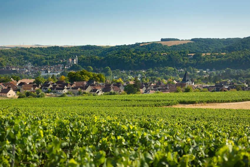 Trois nouveaux prestataires touristiques de l'Yonne obtiennent le label « Vignobles & Découvertes »