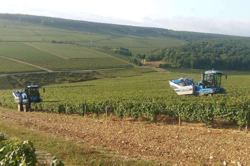 La SAS JANE accroît ses aides mécanisées auprès des viticulteurs du CHABLISIEN