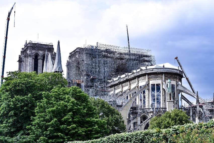 Notre-Dame de Paris va retrouver sa flamboyance sur les toits : les chênes de Groupama y pourvoiront…